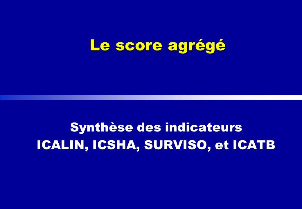 Synthèse des indicateurs ICALIN, ICSHA, SURVISO, et ICATB