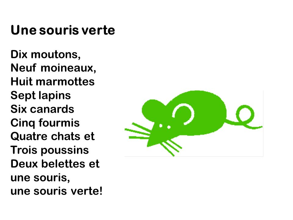 Une souris verte.