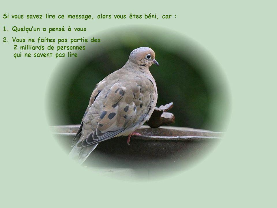Si vous savez lire ce message, alors vous êtes béni, car :