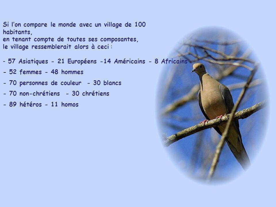 Si l'on compare le monde avec un village de 100 habitants, en tenant compte de toutes ses composantes, le village ressemblerait alors à ceci :
