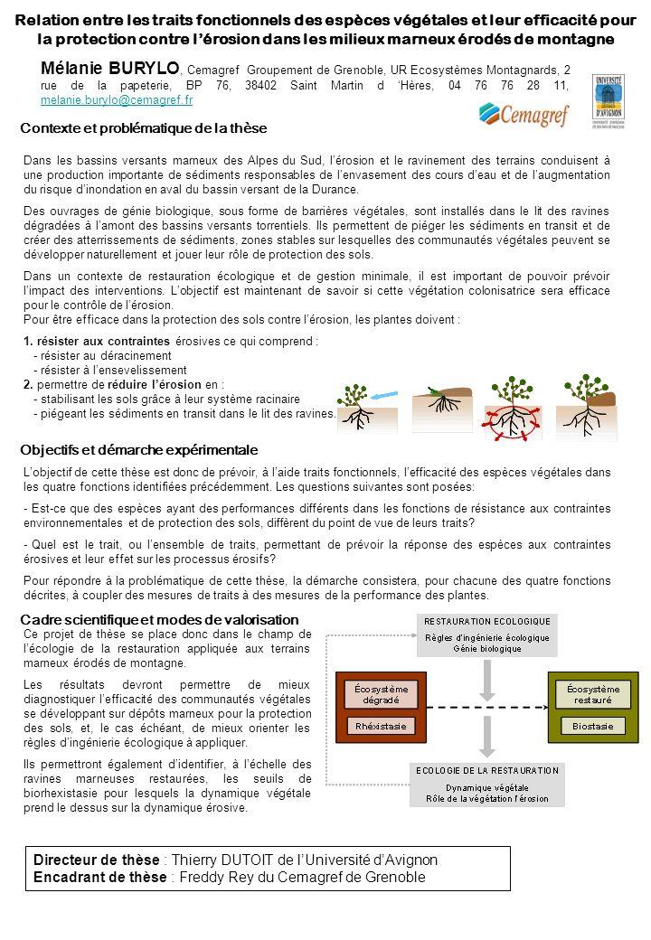 Relation entre les traits fonctionnels des espèces végétales et leur efficacité pour la protection contre l'érosion dans les milieux marneux érodés de montagne