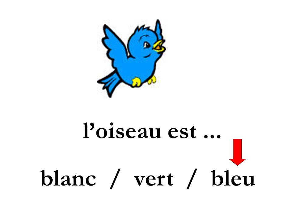 l'oiseau est ... blanc / vert / bleu
