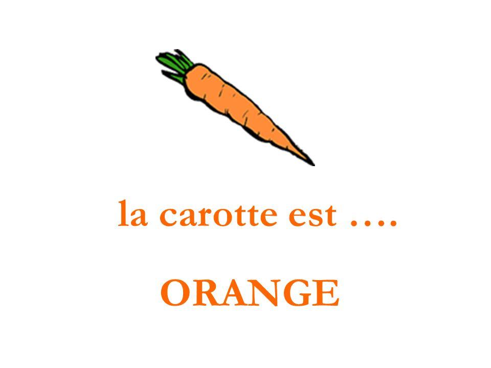 la carotte est …. ORANGE