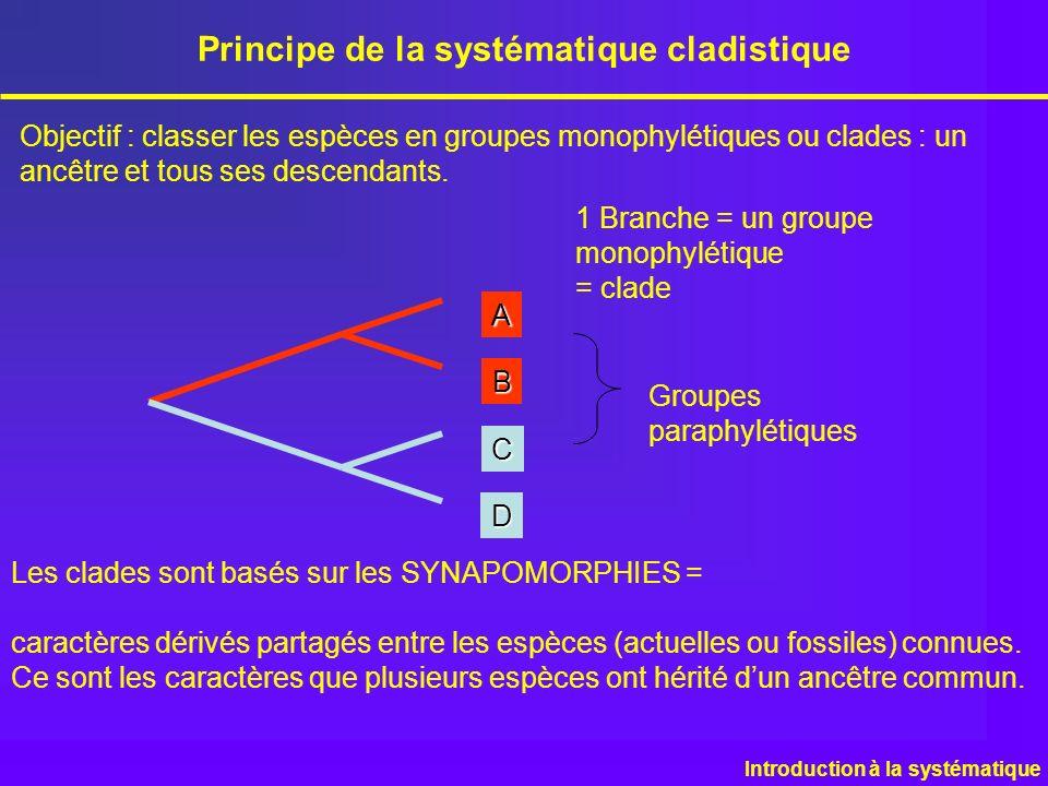 Principe de la systématique cladistique