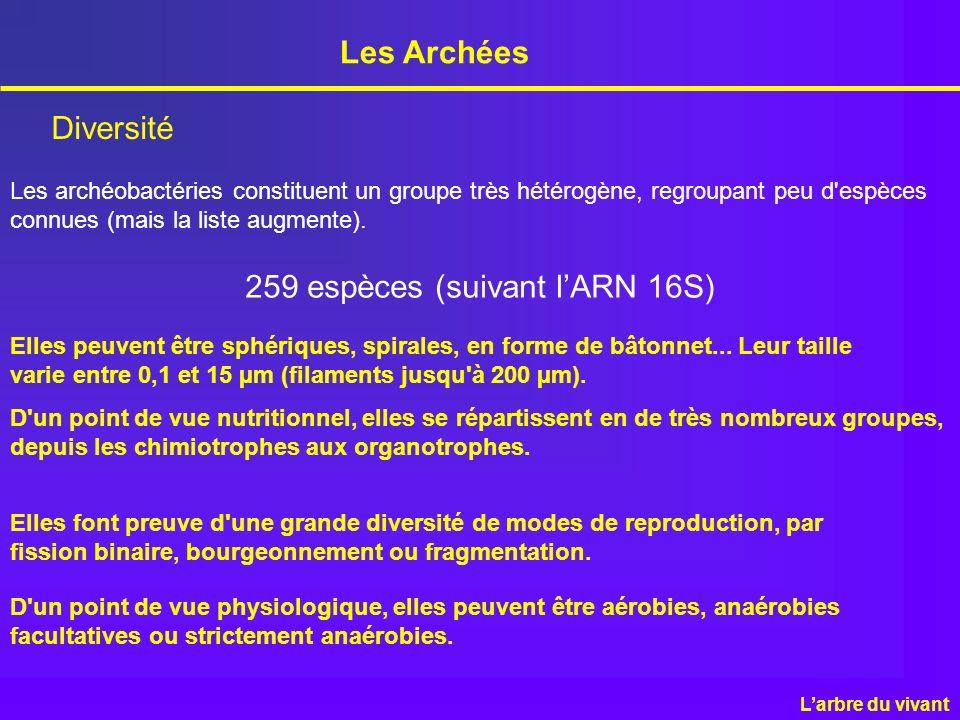 259 espèces (suivant l'ARN 16S)