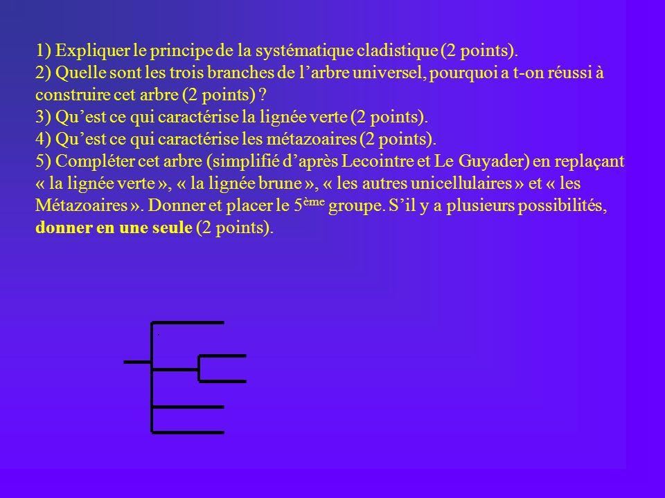 1) Expliquer le principe de la systématique cladistique (2 points).