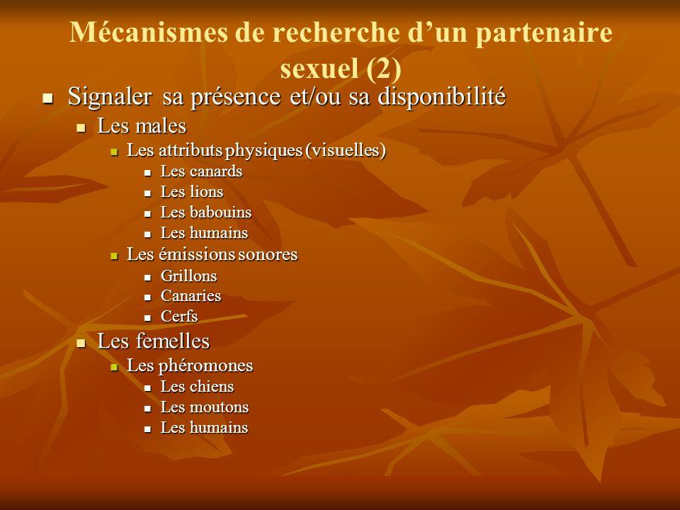 Mécanismes de recherche d'un partenaire sexuel (2)