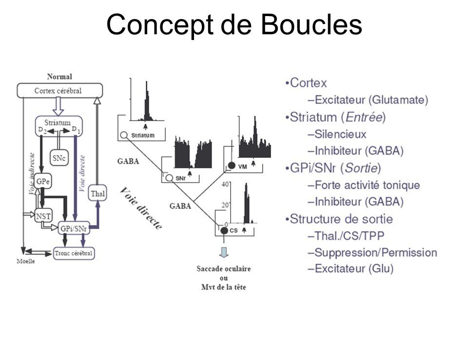 Concept de Boucles