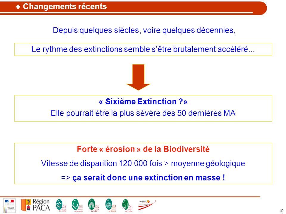 Forte « érosion » de la Biodiversité
