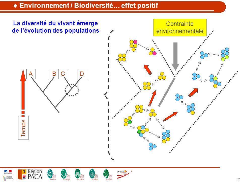 La diversité du vivant émerge de l'évolution des populations