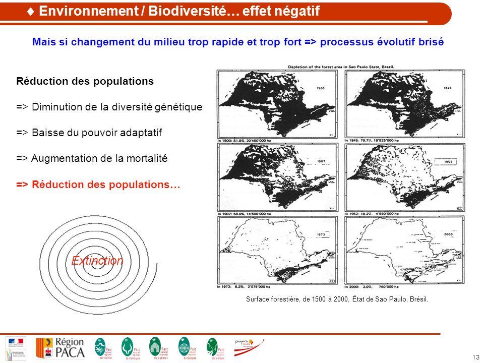 Surface forestière, de 1500 à 2000, État de Sao Paulo, Brésil.