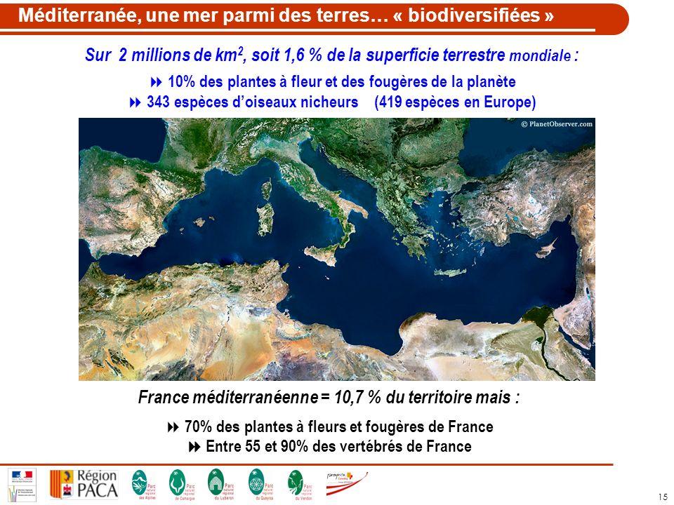 Méditerranée, une mer parmi des terres… « biodiversifiées »