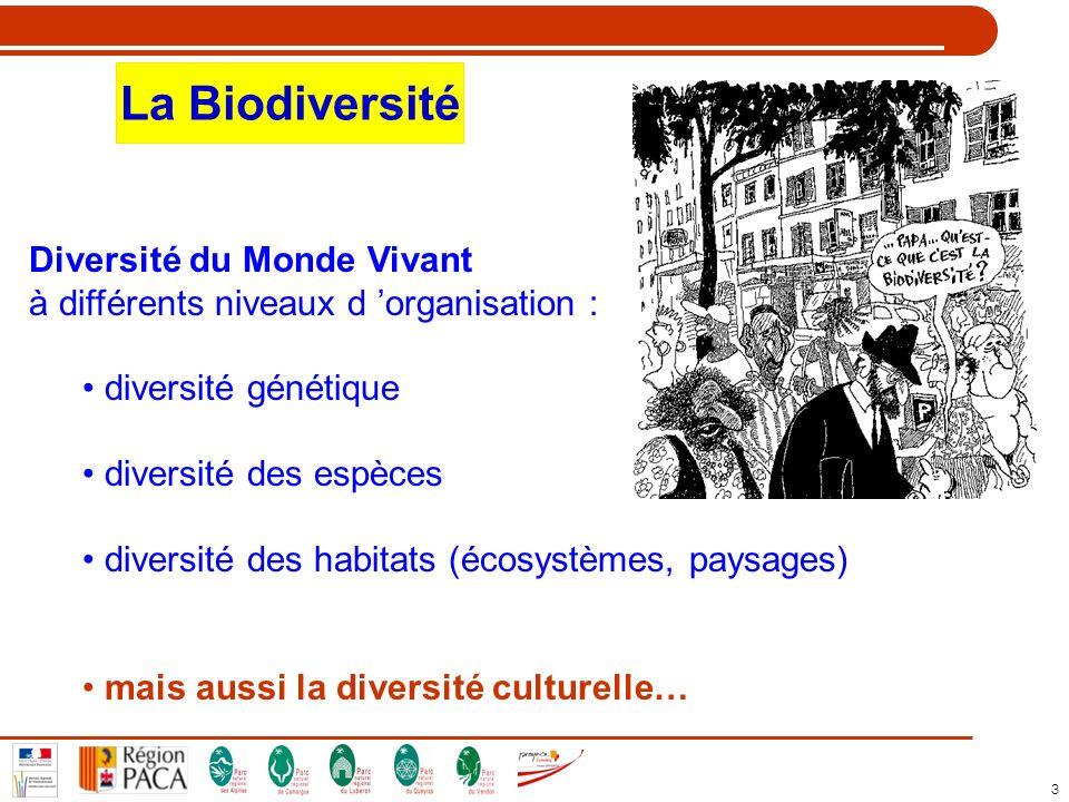 La Biodiversité Diversité du Monde Vivant