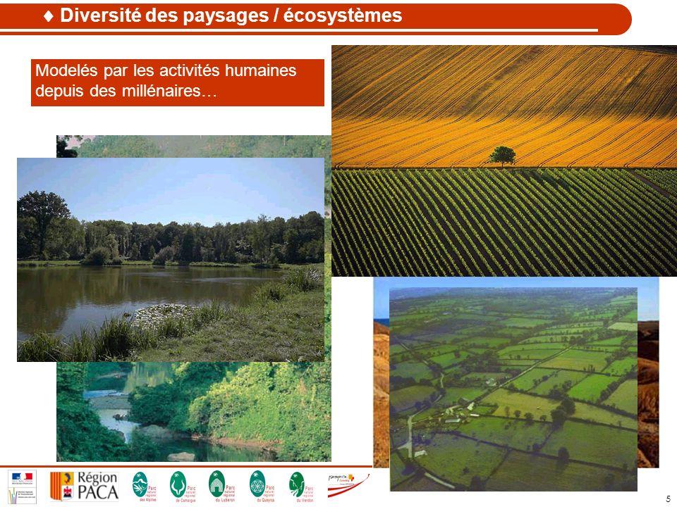  Diversité des paysages / écosystèmes
