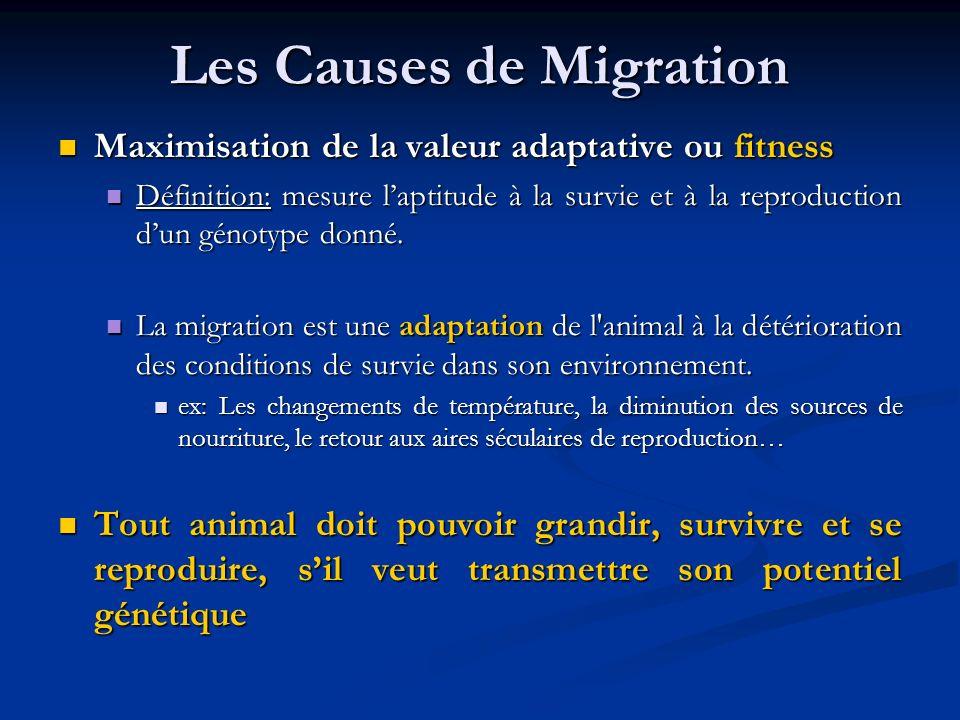 Les Causes de Migration