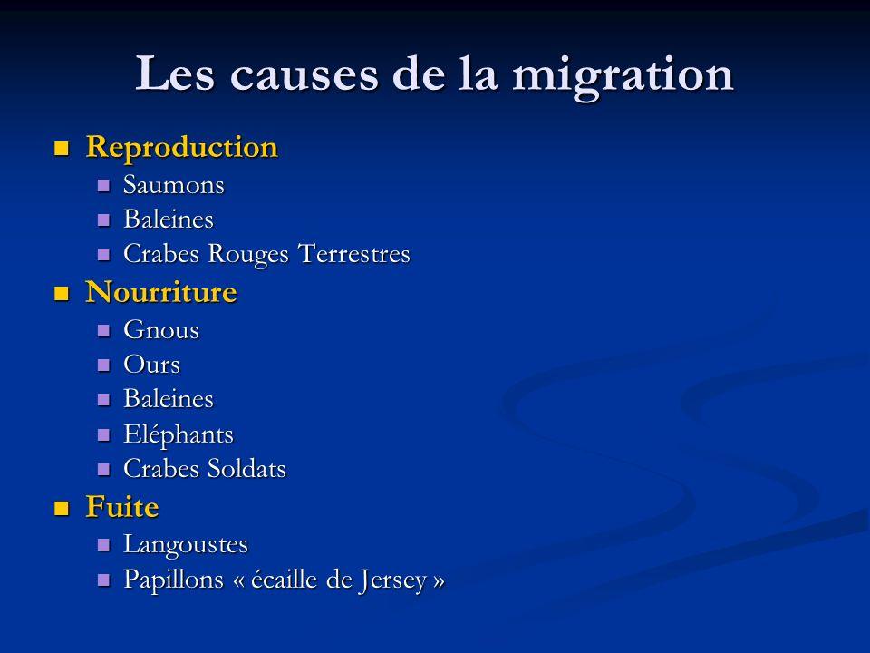 Les causes de la migration