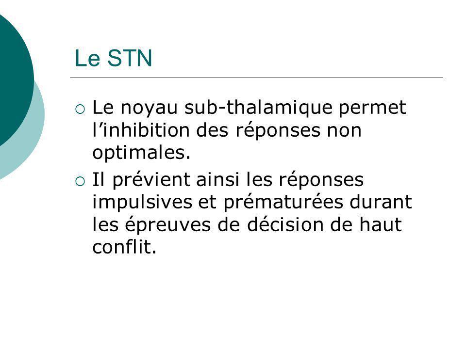 Le STN Le noyau sub-thalamique permet l'inhibition des réponses non optimales.