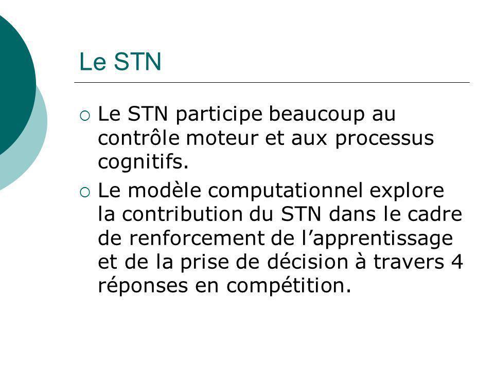 Le STN Le STN participe beaucoup au contrôle moteur et aux processus cognitifs.