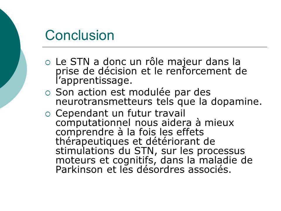 Conclusion Le STN a donc un rôle majeur dans la prise de décision et le renforcement de l'apprentissage.