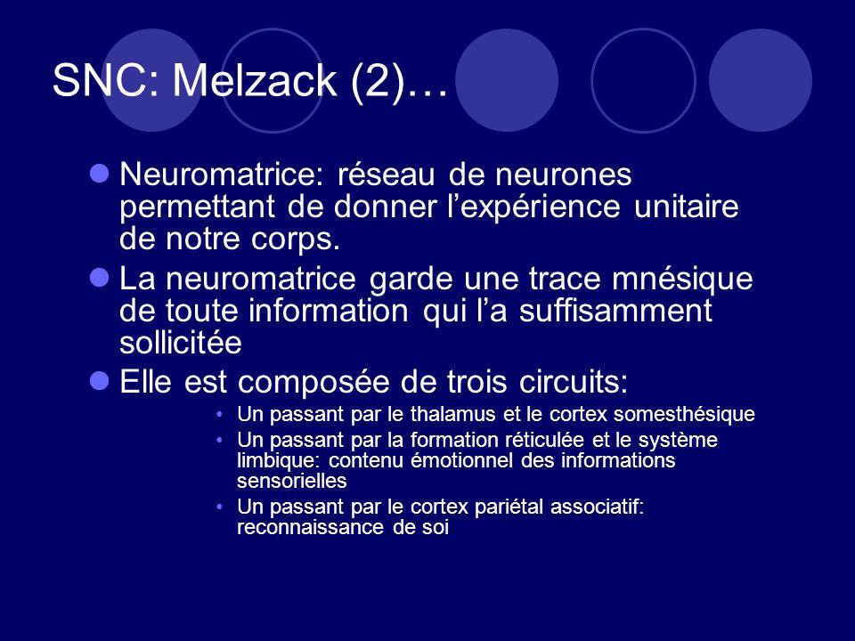 SNC: Melzack (2)… Neuromatrice: réseau de neurones permettant de donner l'expérience unitaire de notre corps.