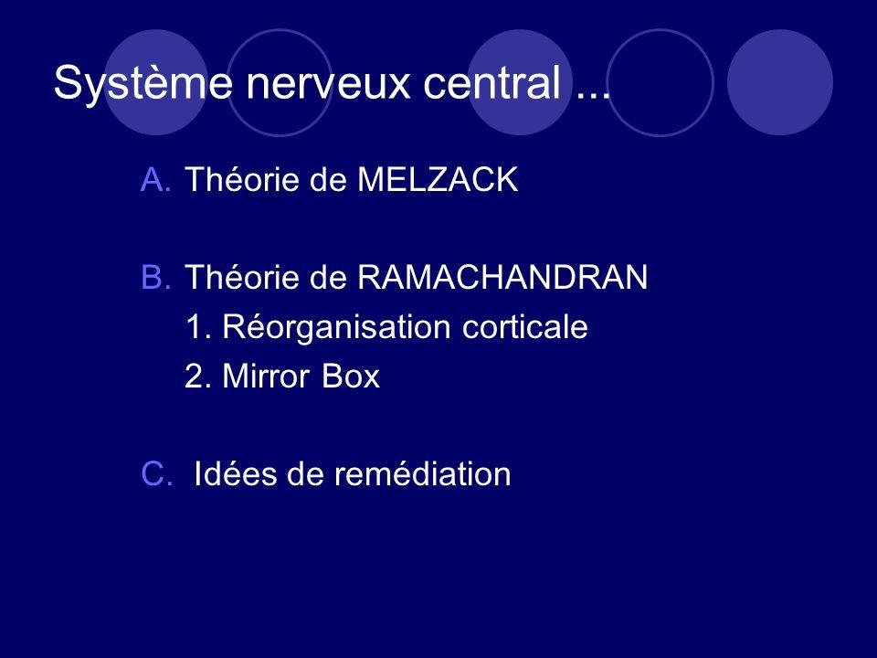 Système nerveux central ...
