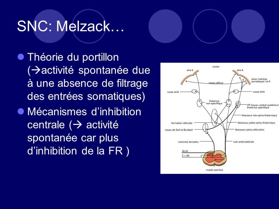 SNC: Melzack… Théorie du portillon (activité spontanée due à une absence de filtrage des entrées somatiques)