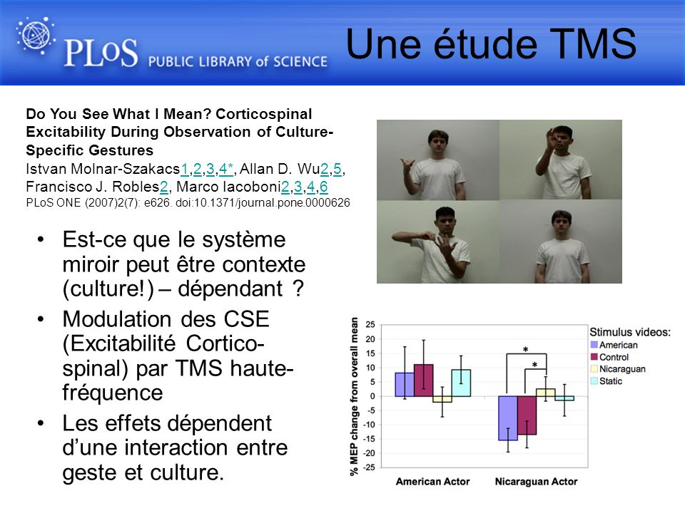 Une étude TMS Do You See What I Mean Corticospinal Excitability During Observation of Culture-Specific Gestures.