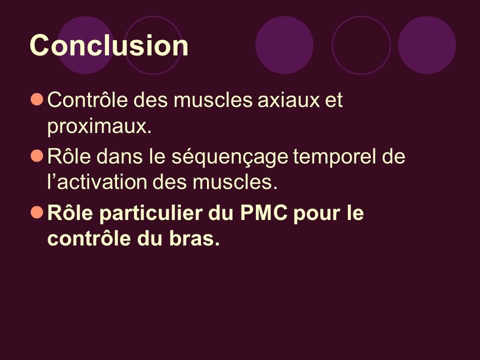 Conclusion Contrôle des muscles axiaux et proximaux.