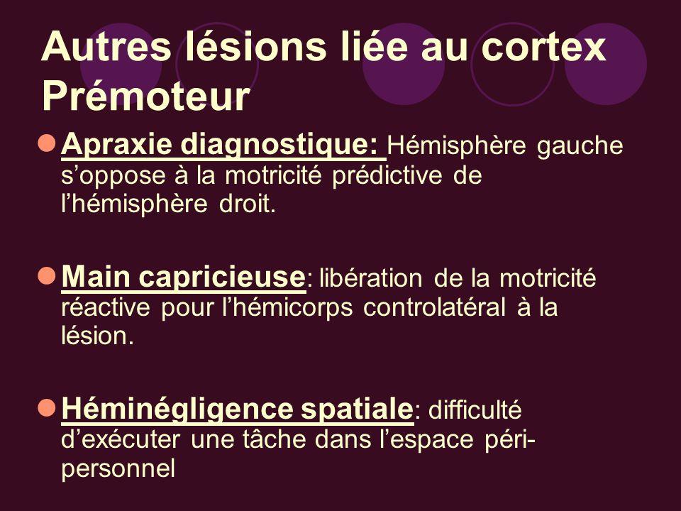 Autres lésions liée au cortex Prémoteur