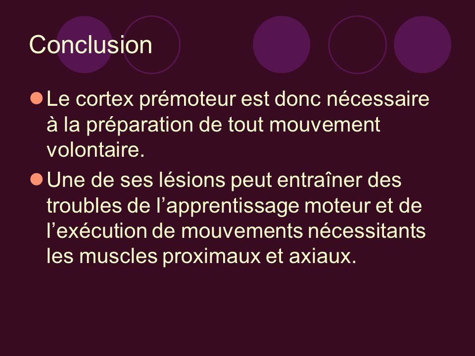 ConclusionLe cortex prémoteur est donc nécessaire à la préparation de tout mouvement volontaire.