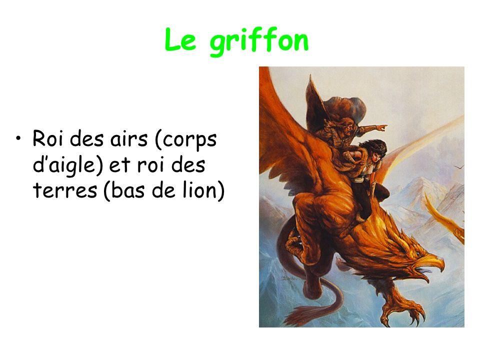 Le griffon Roi des airs (corps d'aigle) et roi des terres (bas de lion)