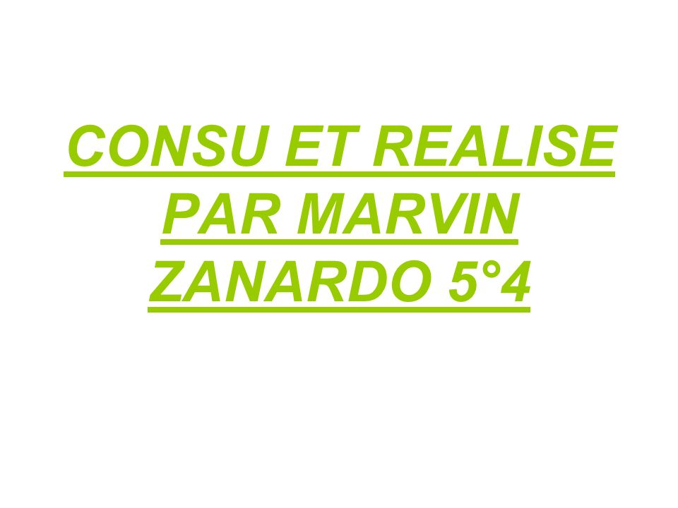CONSU ET REALISE PAR MARVIN ZANARDO 5°4