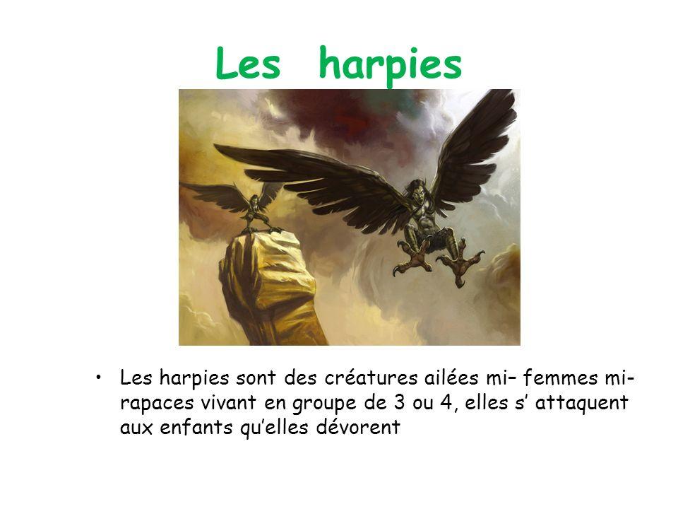 Les harpies Les harpies sont des créatures ailées mi– femmes mi-rapaces vivant en groupe de 3 ou 4, elles s' attaquent aux enfants qu'elles dévorent.