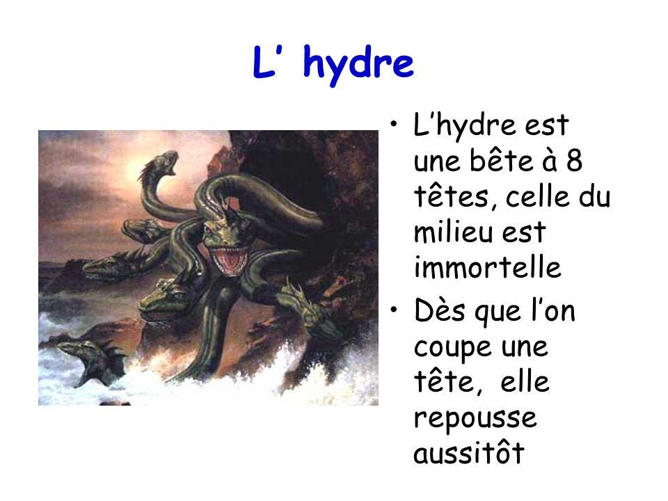 L' hydre L'hydre est une bête à 8 têtes, celle du milieu est immortelle.