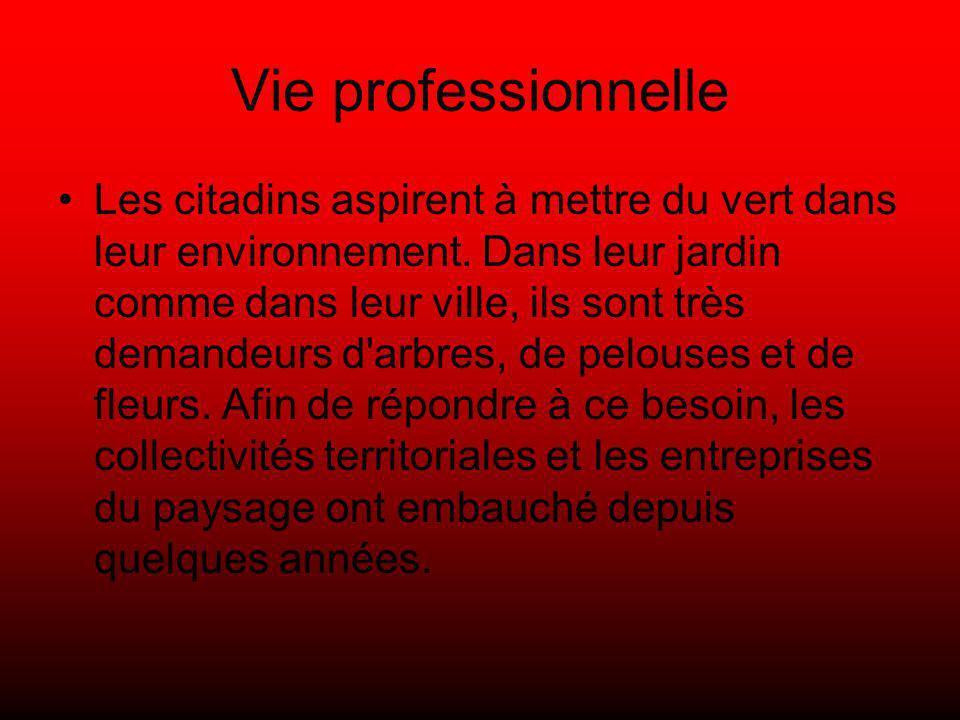Vie professionnelle