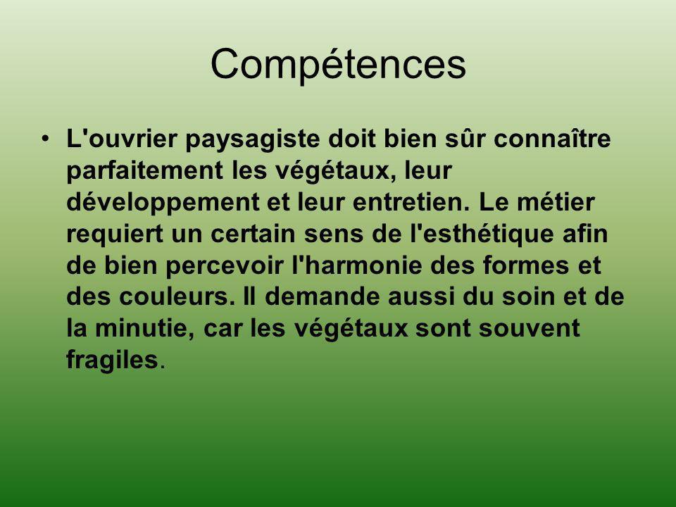 Compétences