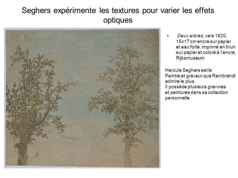 Seghers expérimente les textures pour varier les effets optiques