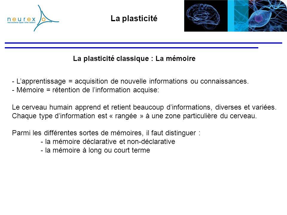 La plasticité La plasticité classique : La mémoire