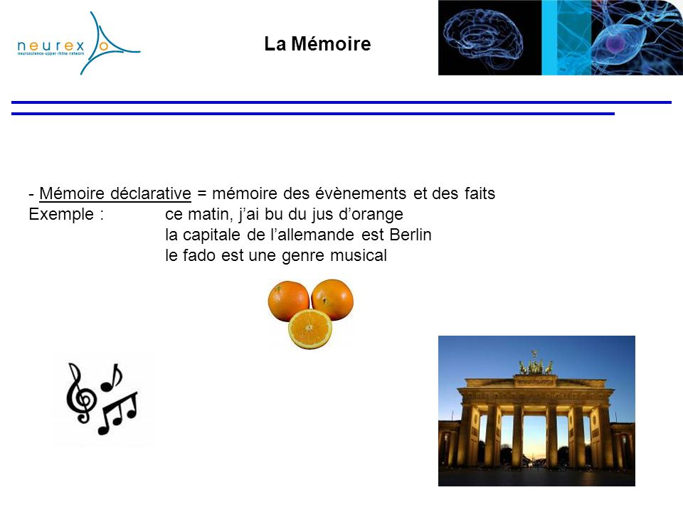 La Mémoire Mémoire déclarative = mémoire des évènements et des faits