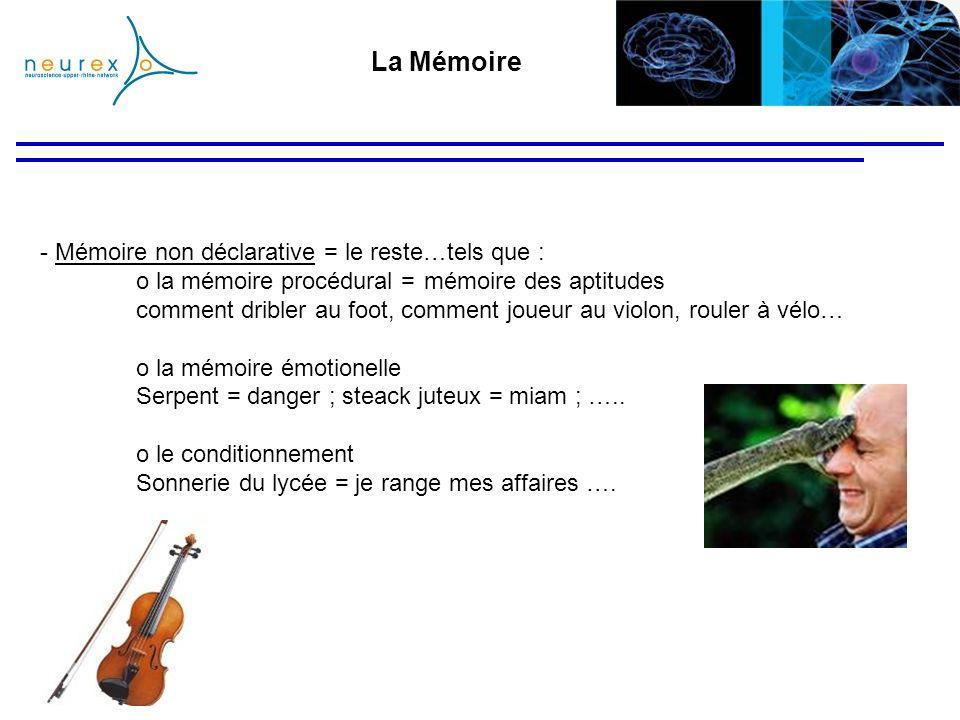 La Mémoire Mémoire non déclarative = le reste…tels que :