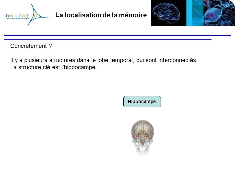 La localisation de la mémoire