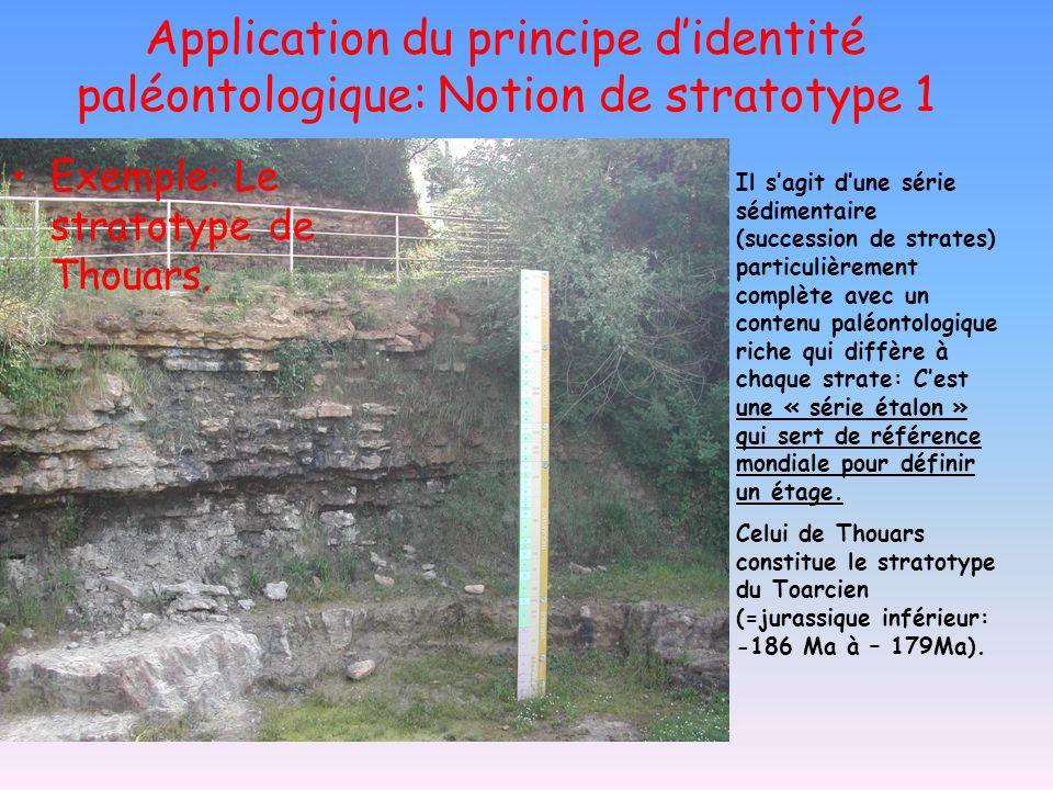 Application du principe d'identité paléontologique: Notion de stratotype 1