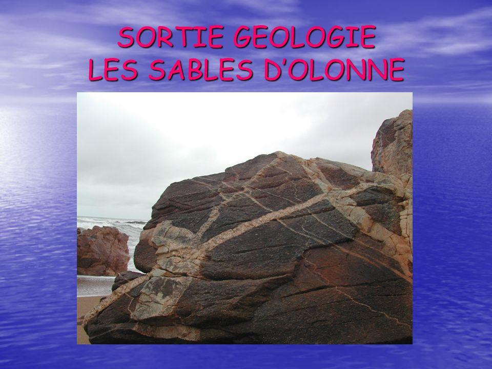 SORTIE GEOLOGIE LES SABLES D'OLONNE