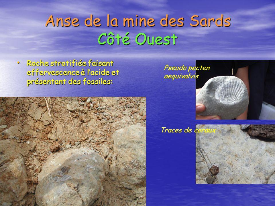 Anse de la mine des Sards Côté Ouest