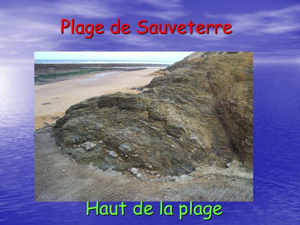 Plage de Sauveterre Haut de la plage