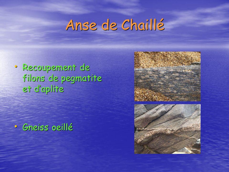 Anse de Chaillé Recoupement de filons de pegmatite et d'aplite
