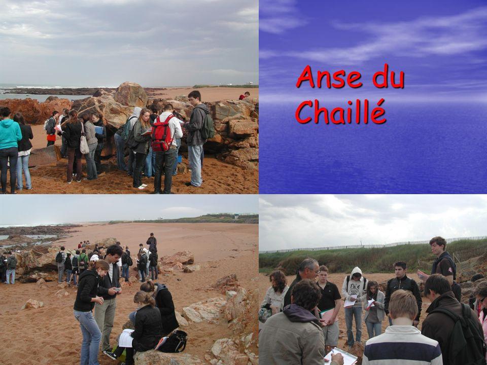 Anse du Chaillé