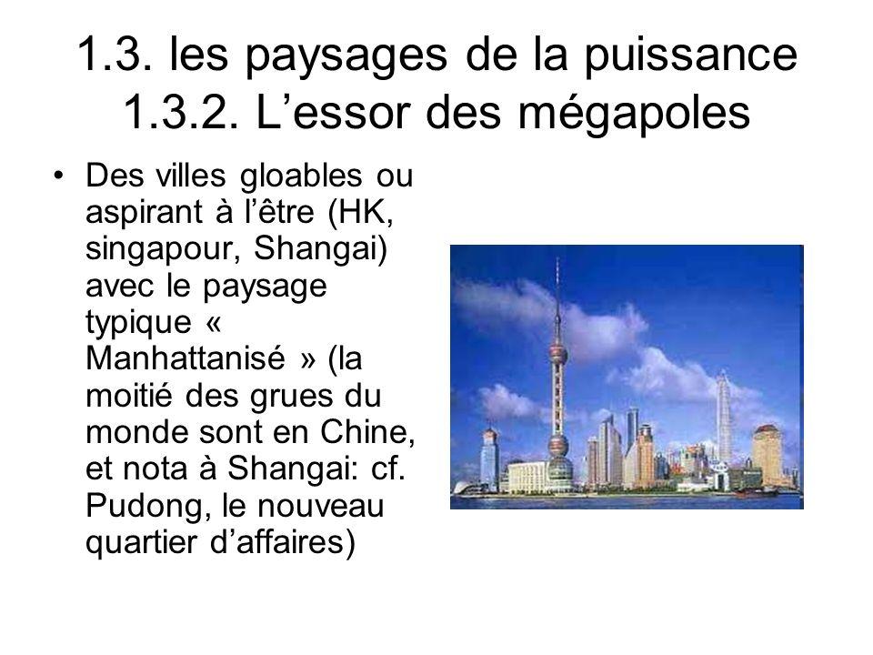 1.3. les paysages de la puissance 1.3.2. L'essor des mégapoles