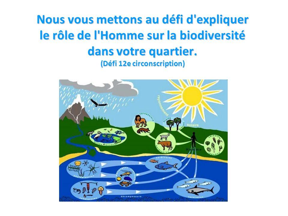 2 Nous vous mettons au défi d expliquer le rôle de l Homme sur la biodiversité dans votre quartier.