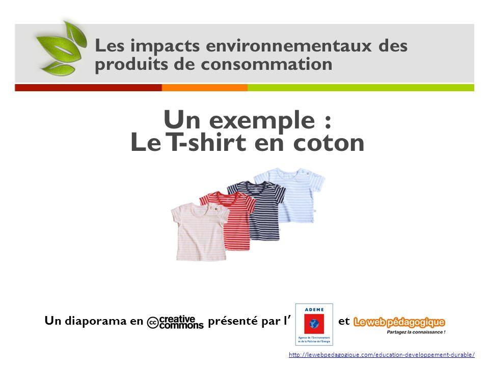 Un exemple : Le T-shirt en coton